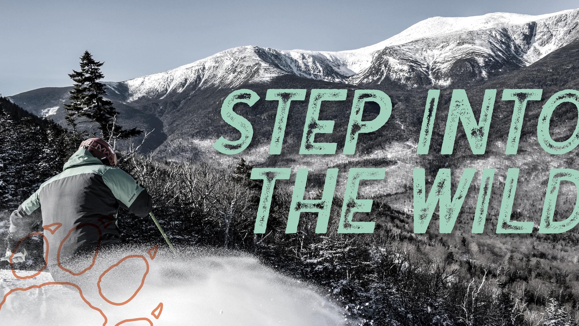 Wildcat Mountain Branding